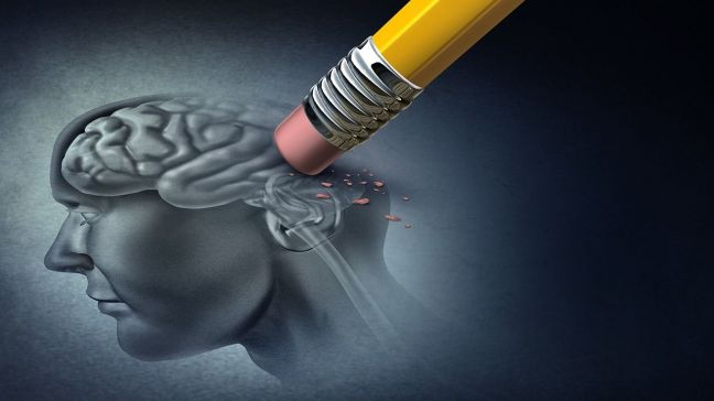 Adopted Ayurvedic tips to prevent amnesia/World Creativities