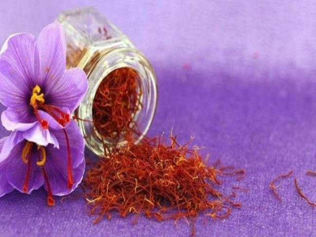 Saffron will also remove serious diseases/World Creativities