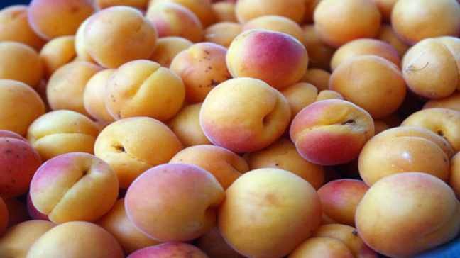 Benefits of apricots, beneficial for cough to arthritis/WorldCreativities