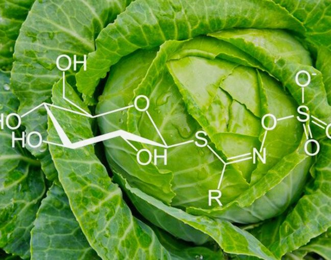 Eating cabbage will blossom, this panacea will be beneficial