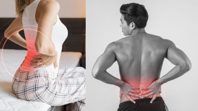 Back Pain Symptoms and Causes and their remedies which are very beneficial for you/WorldCreativities