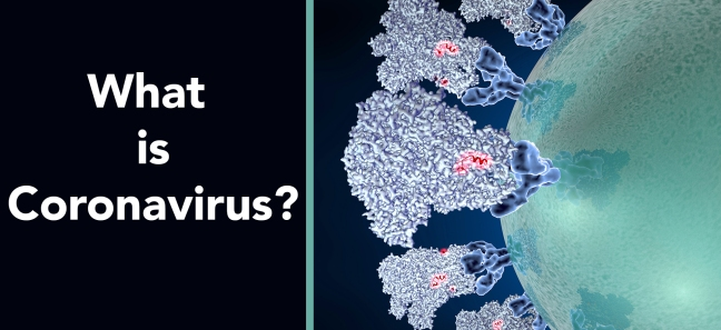 What is the corona virus, what are its symptoms and what is causing them, we know full information about it/WorldCreativities