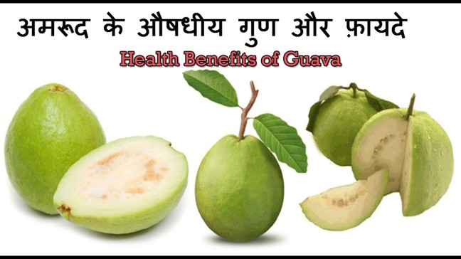 Amrud | Know the unique benefits of eating guava/WorldCreativities