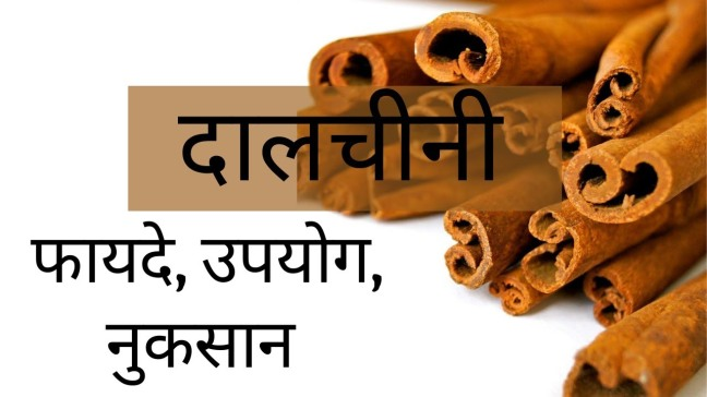 Advantages, Uses and Disadvantages of Cinnamon, with Ayurveda/WorldCreativities