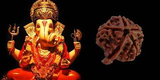 Ganesha Rudraksha meets Saduddhi | Importance of Ganesh Rudraksha | Method of wearing Ganesh Rudraksha - @worldcreativities