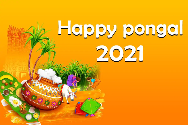 Pongal | How is the festival of Pongal celebrated in South India? Learn