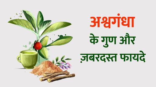 world creativities Benefits of ashwagandha
