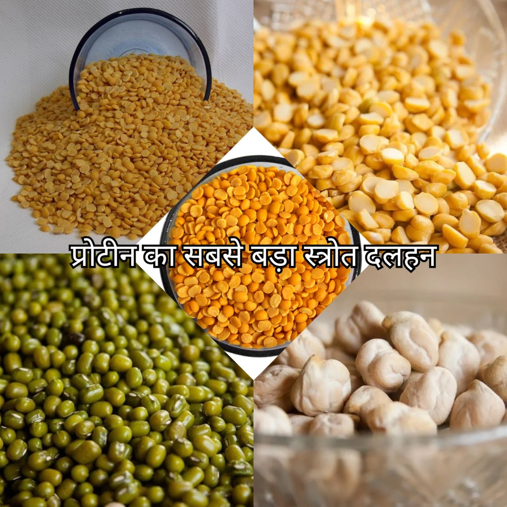 world creativities You will be shocked knowing the benefits of eating lentils