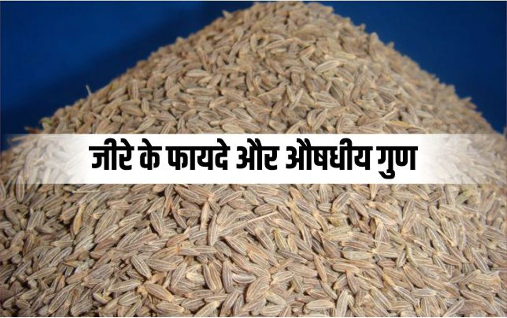 Know how beneficial cumin is for your health/worldcreativities