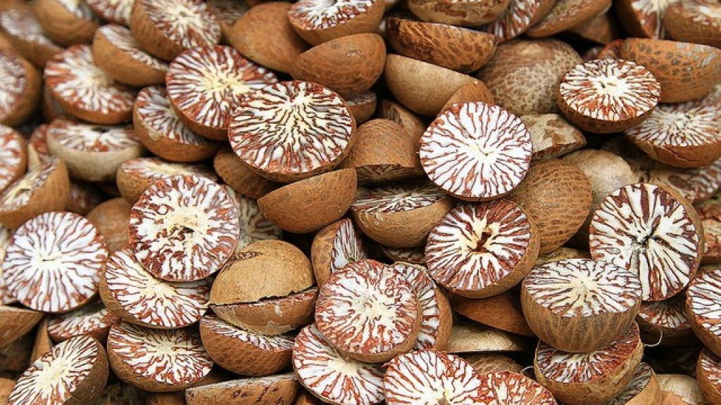 world creativities Does your house chew betel nut?