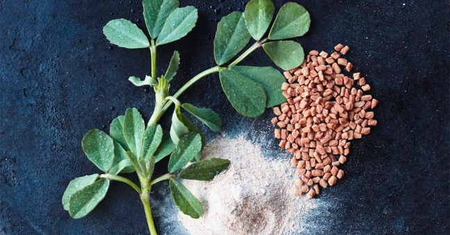 world creativities Many serious diseases are hidden in fenugreek, know what are the benefits of regular intake