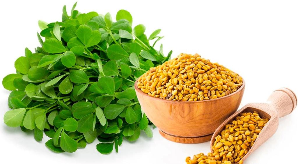 world creativities Fenugreek leaves beneficial for diabetes and heart patients, know its 7 benefits