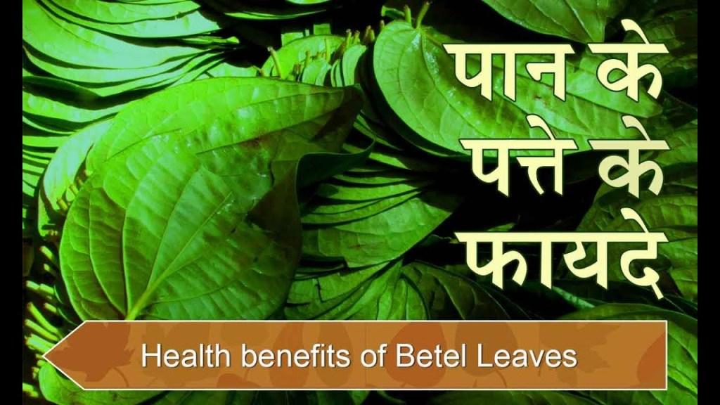 20 other amazing benefits of betel leaf