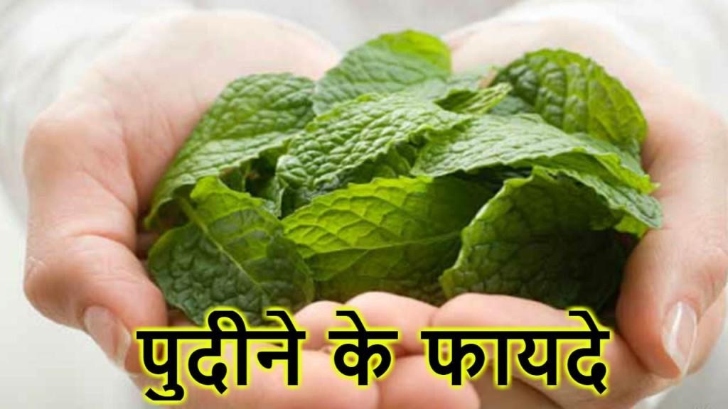 Mint home remedies/Worldcreativities
