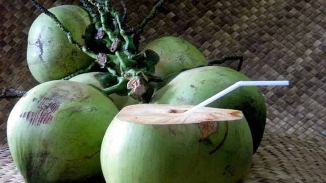world creativities Know 5 benefits of drinking coconut water on World Coconut Day