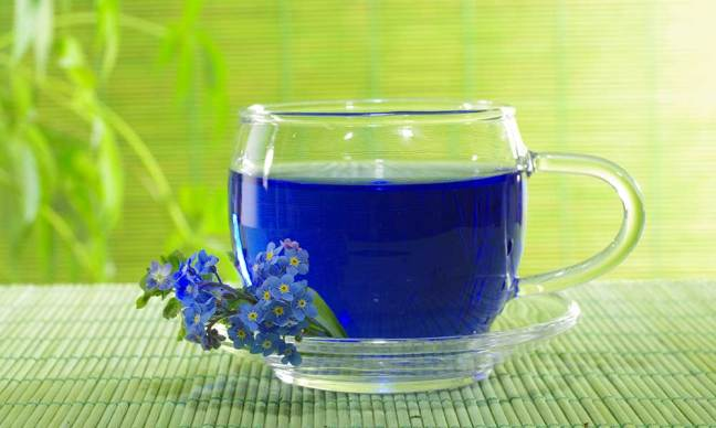 worldcreativities.com What is Blue Tea? Its benefits will surprise you