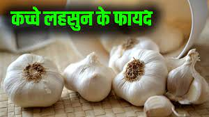 Garlic is used to treat many diseases