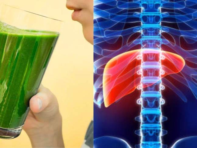 Ministry of AYUSH denied the claims of liver damage from Giloy