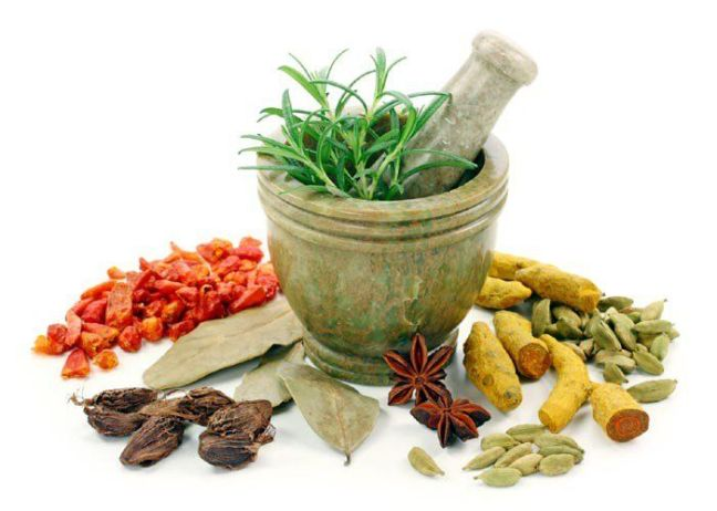 old medicine to cure every disease