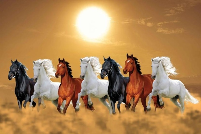 Vastu Tips Pictures of seven white horses will never allow you to have money in your house, there will be progress and positivity