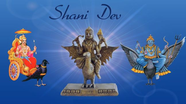 Feed oil paratha to cow's calf, Shani Dev will be pleased